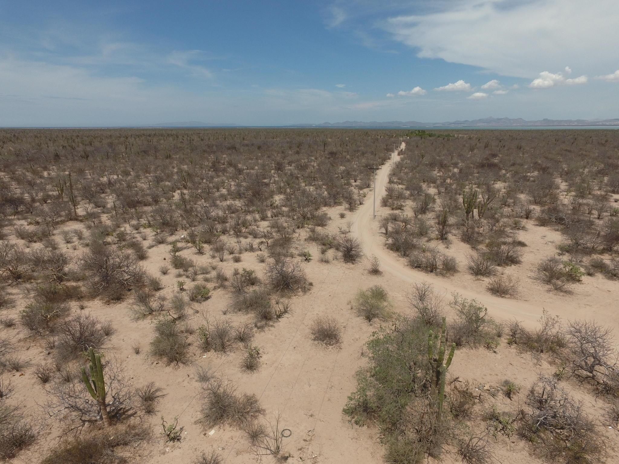 Rancho Zacatecas-18