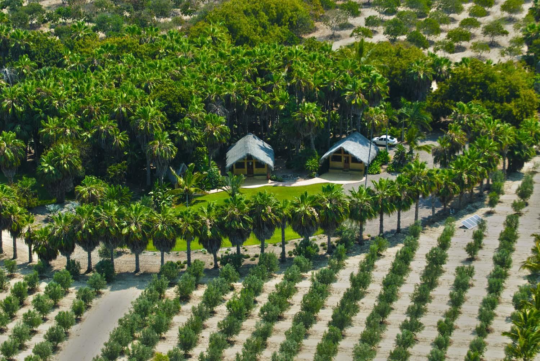 Rancho Si Como No-1