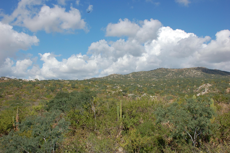 Cerro De Las Antenas-7