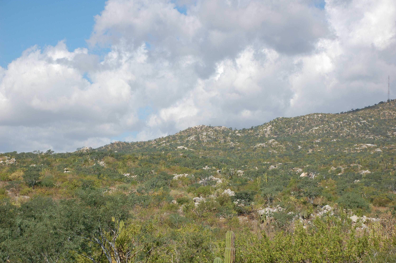 Cerro De Las Antenas-8