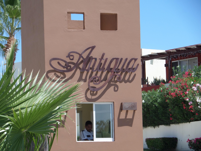 Antigua 329-11