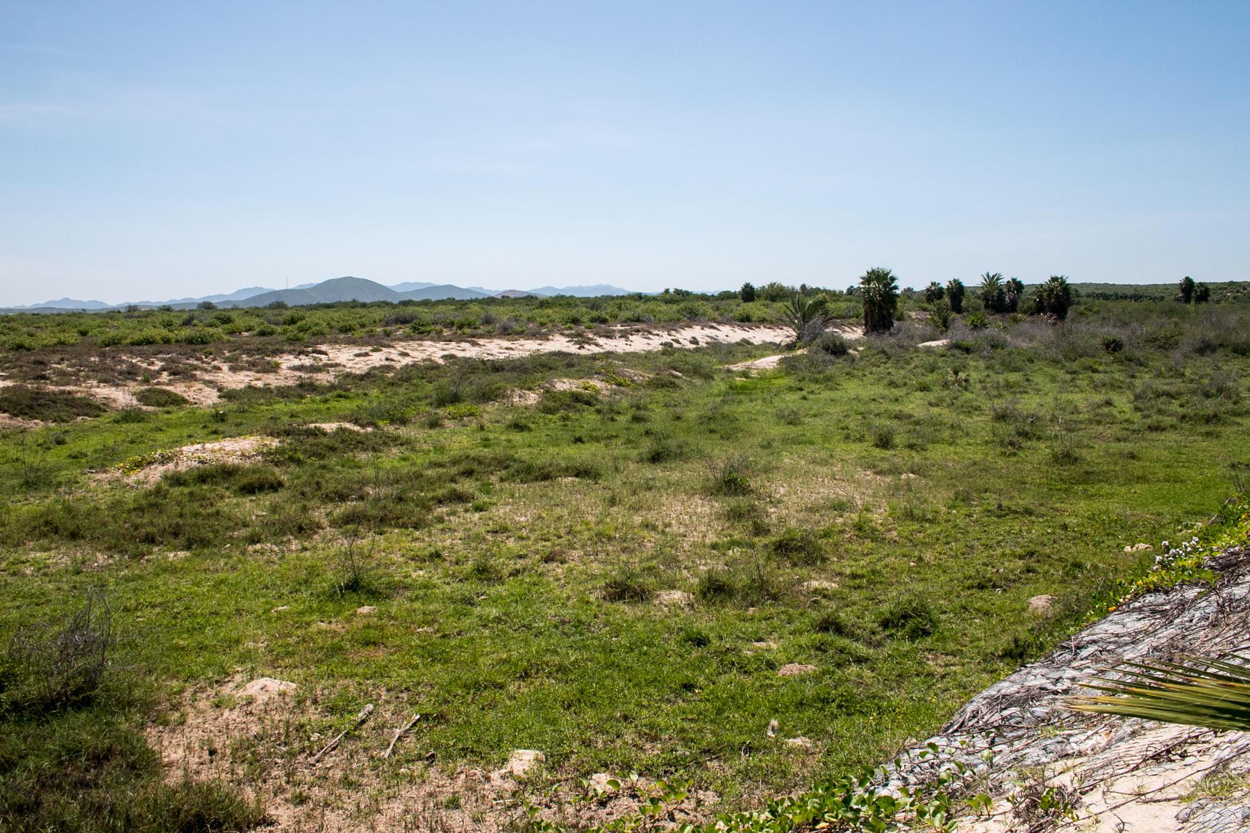 Rancho Serenidad-17