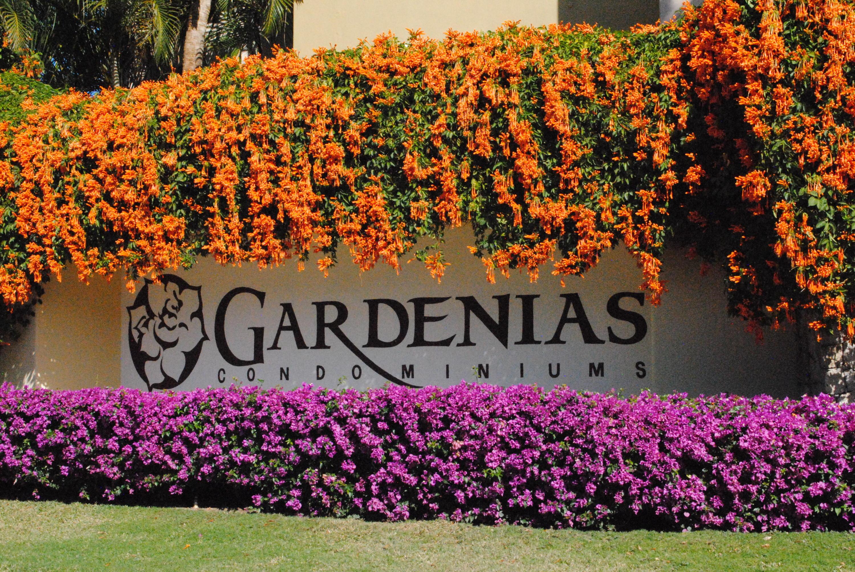 Gardenias Golondrina-24