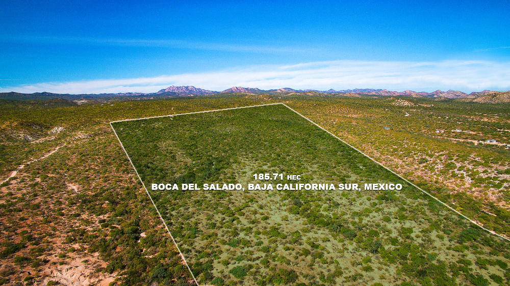 Boca del Salado Lote 185 Hect