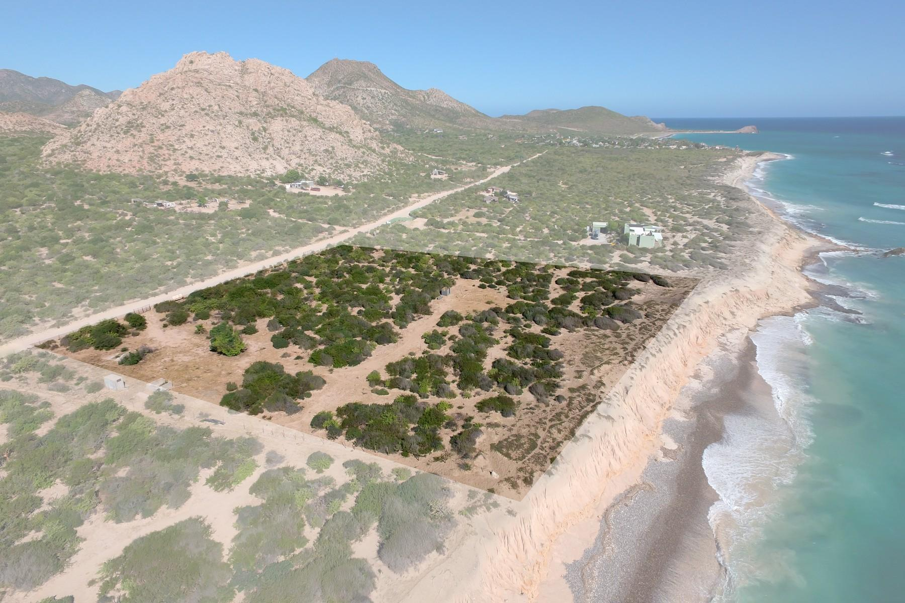 Cabo Pulmo Beachfront parcel-5