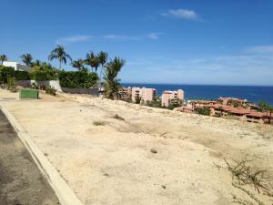 La Jolla Lot 8