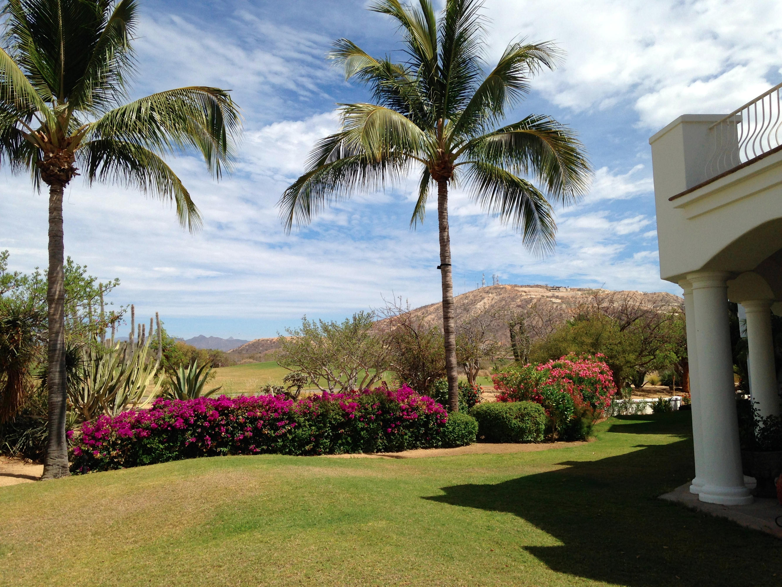 San Jose Corridor, 3 Bedrooms Bedrooms, ,2 BathroomsBathrooms,Condo,For Sale,One Palmilla Dr. North,18-1636