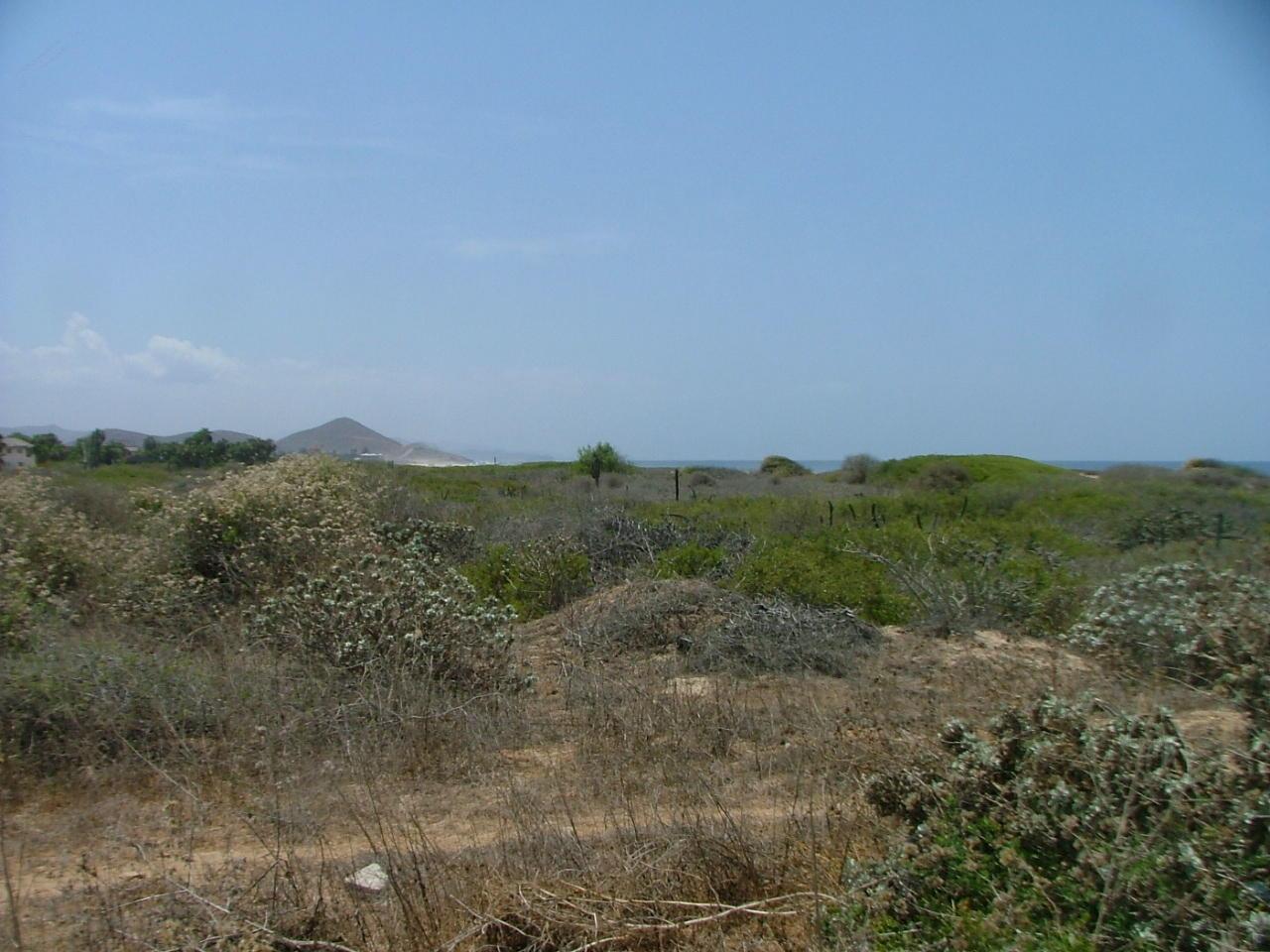 San Pedrito Beach Block 320-9