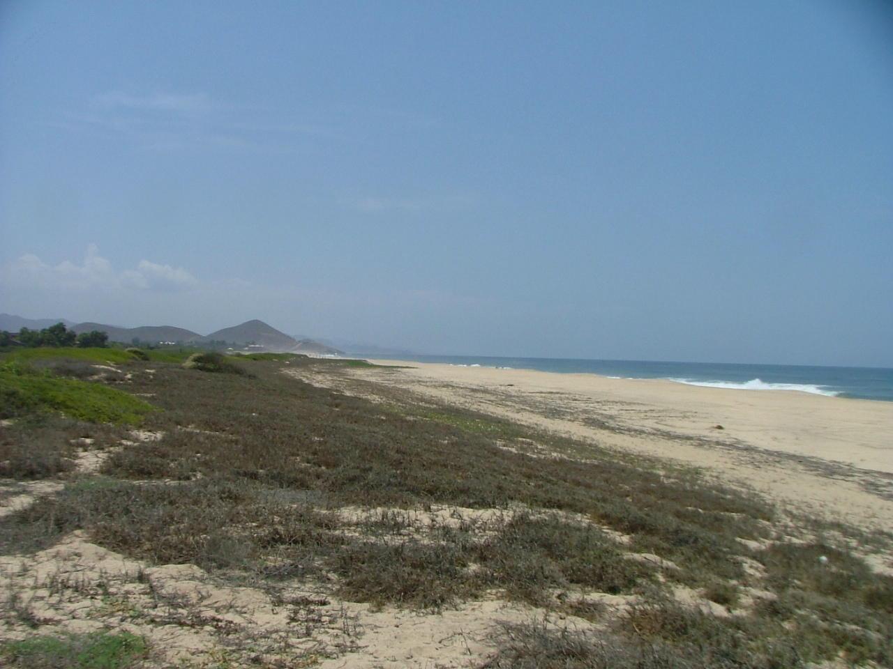 San Pedrito Beach Block 320-10