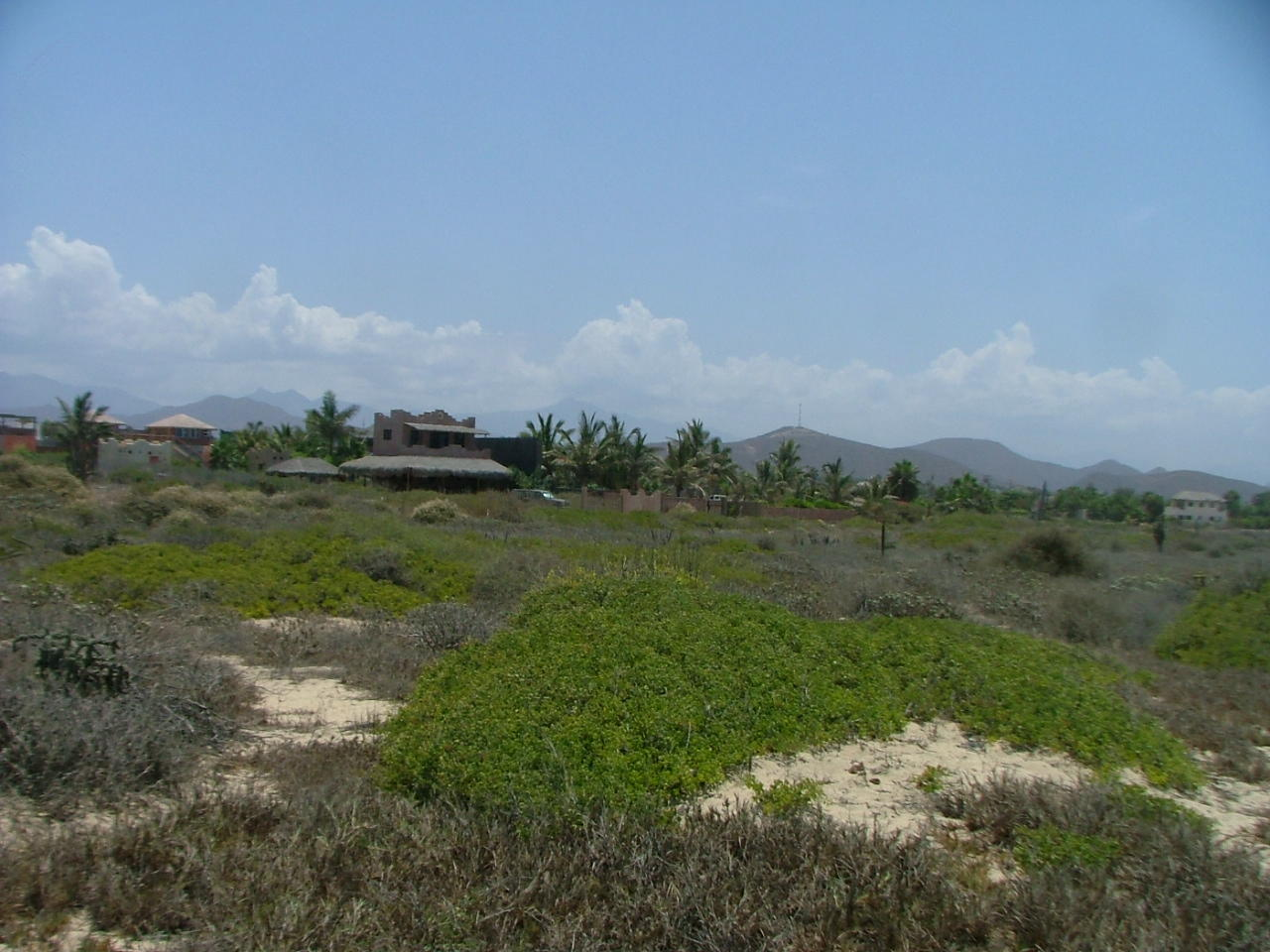 San Pedrito Beach Block 320-11