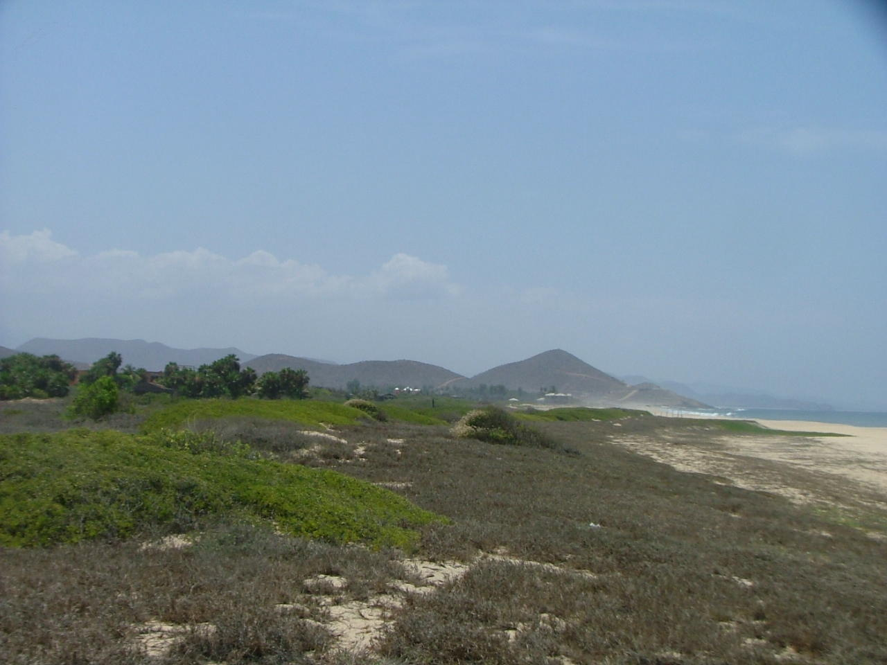 San Pedrito Beach Block 320-16