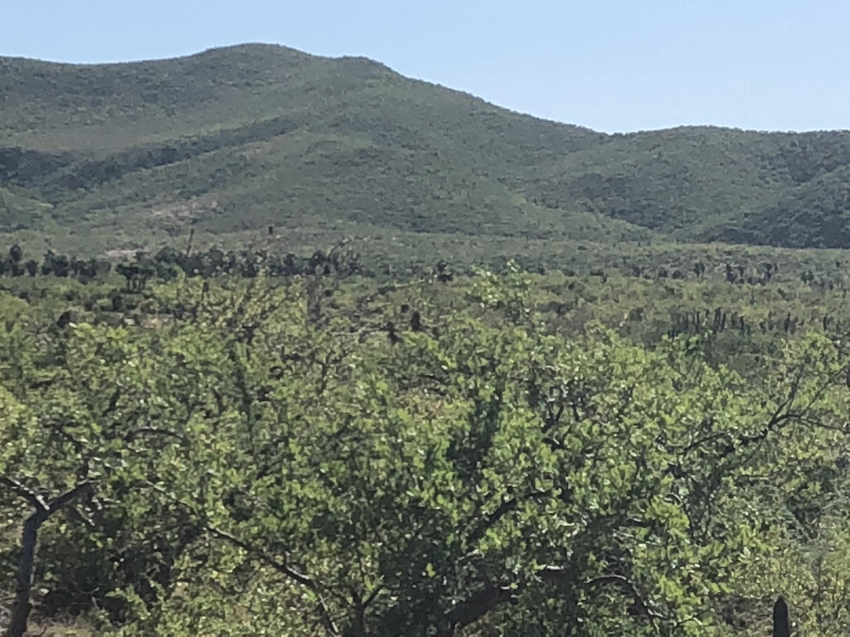 Rancho del Mar-3