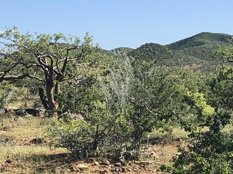 Rancho del Mar-5