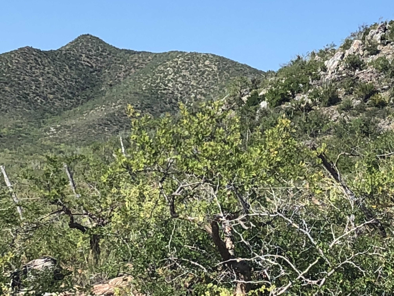 Rancho del Mar-7