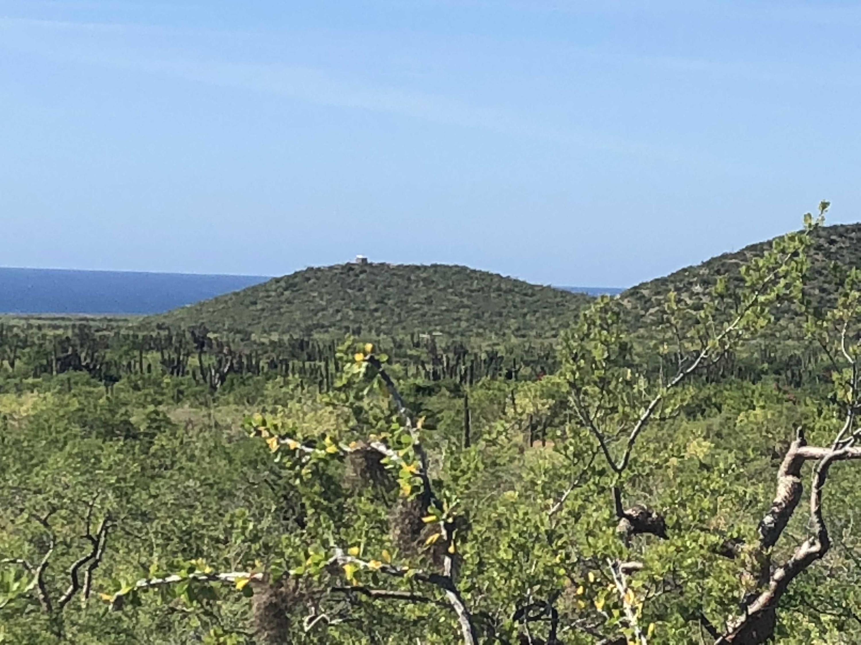 Rancho del Mar-10