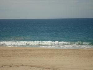 Oceanfront Lot Todos Santos #6