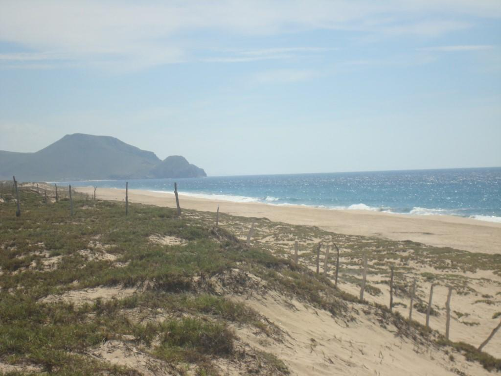 Oceanfront Lot Todos Santos #6-2