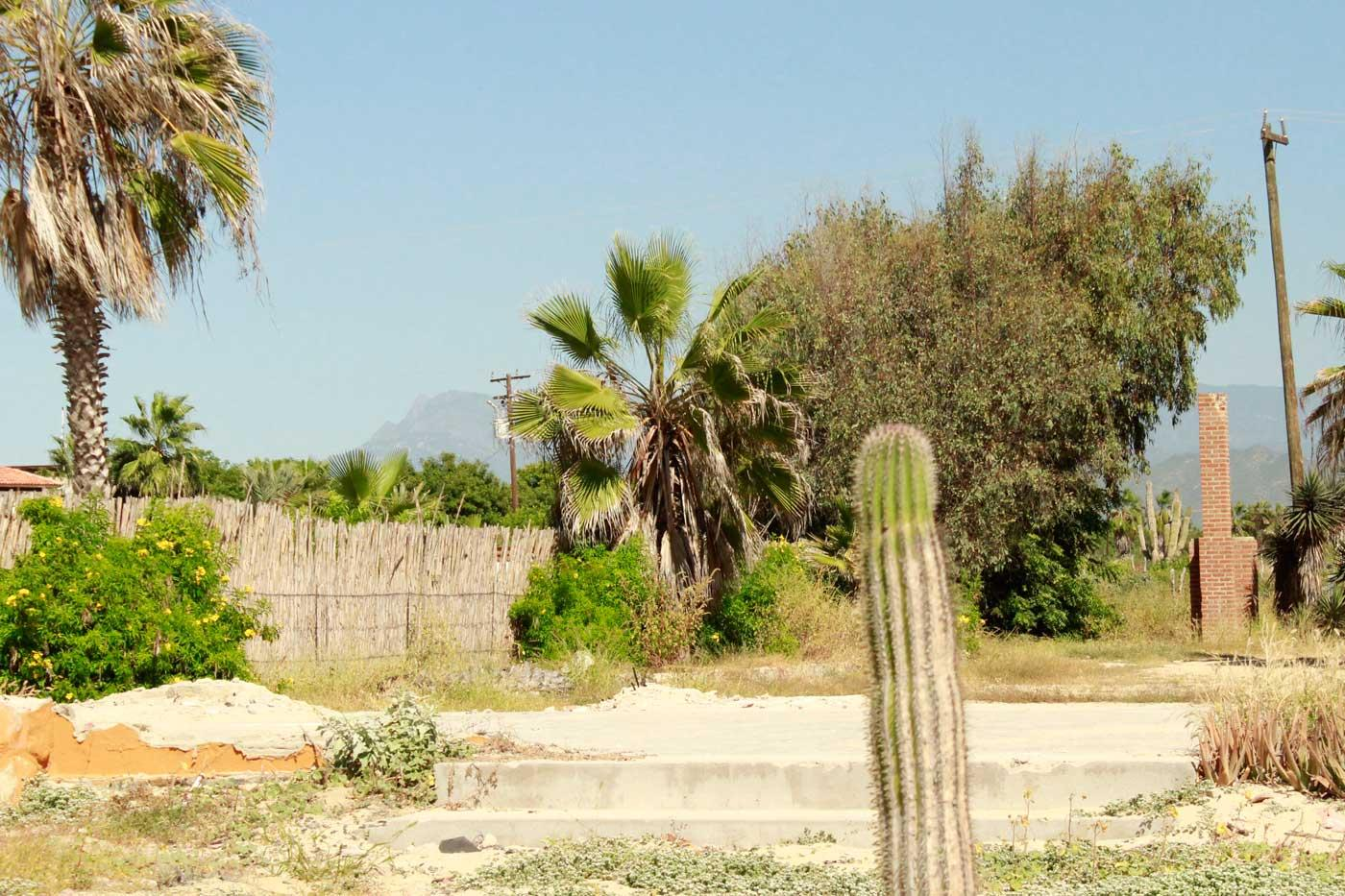 San Pedrito Double Beachfront-2