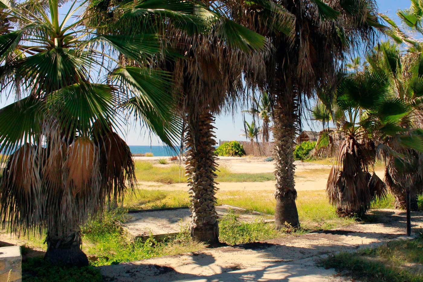 San Pedrito Double Beachfront-11