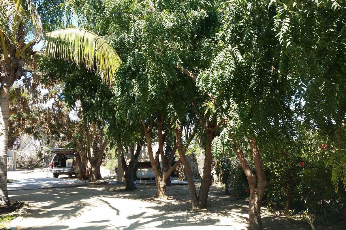 Rancho LaMore-15