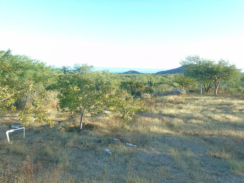 San Jose del Cabo, ,Land,For Sale,Parcela Fracc 4 y 5 Ejido,18-3073