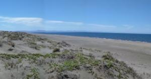 Mogote Double Beach Front Lot