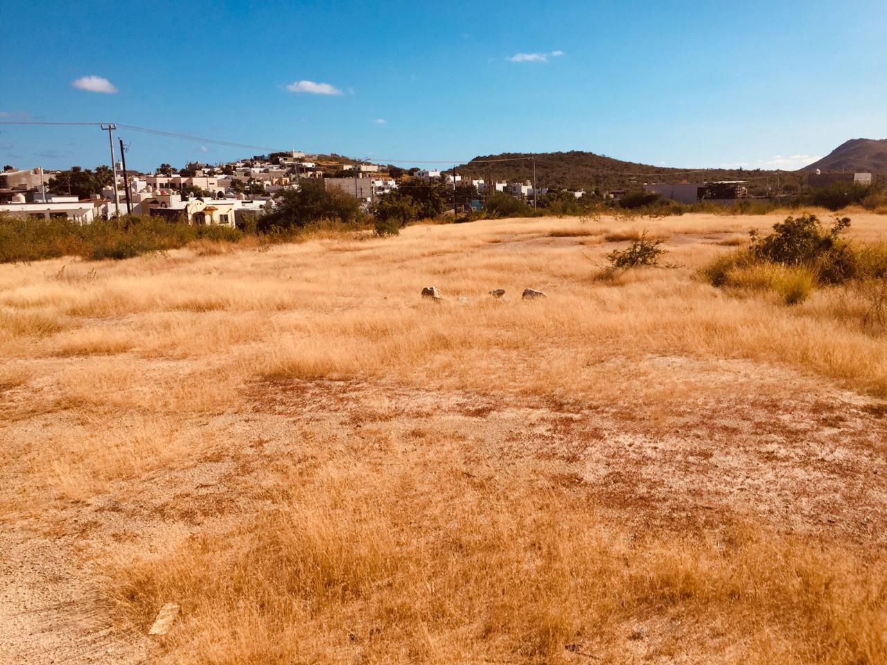 Land for developers-10