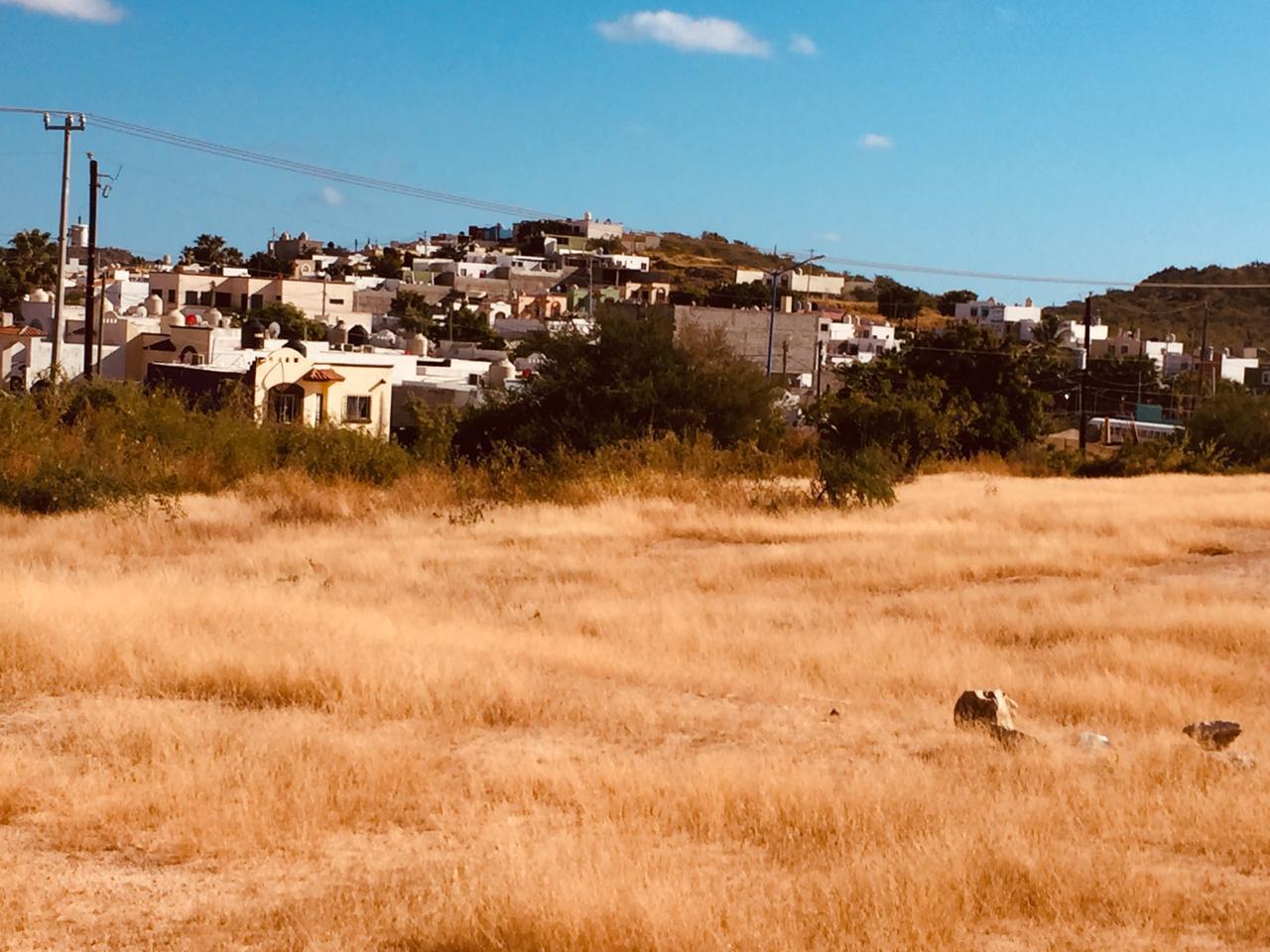 Cabo San Lucas, ,Land,For Sale,Cabo Falso,19-217