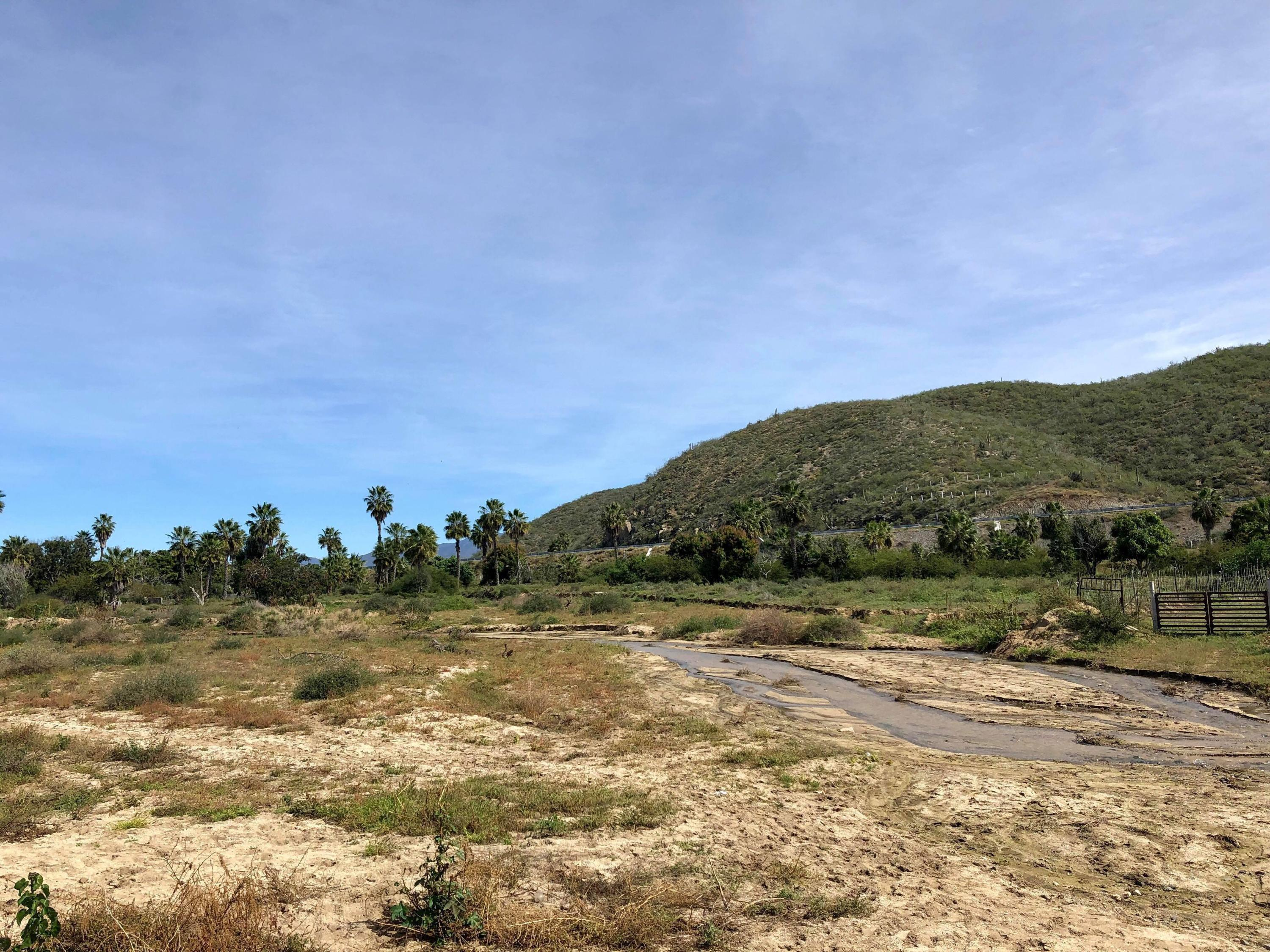 Pacific, ,Land,For Sale,HIGHWAY 19,19-219