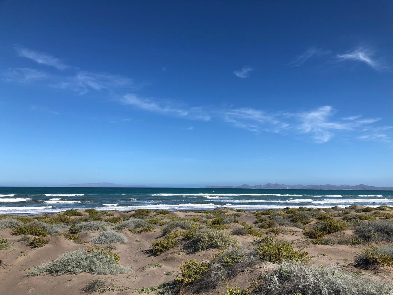 Mogote Double Beach Front Lot-10