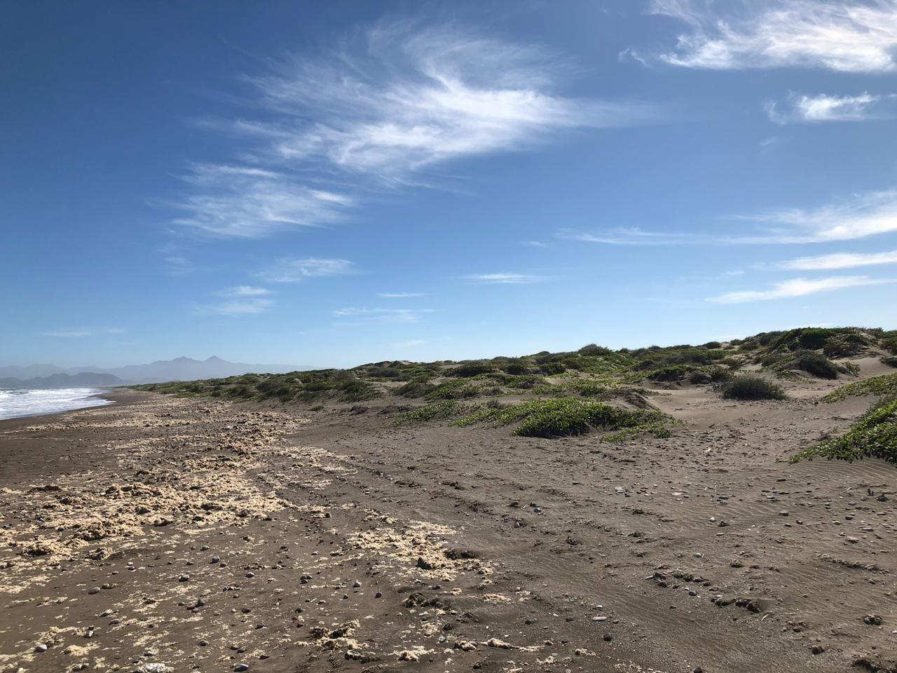 Mogote Double Beach Front Lot-12