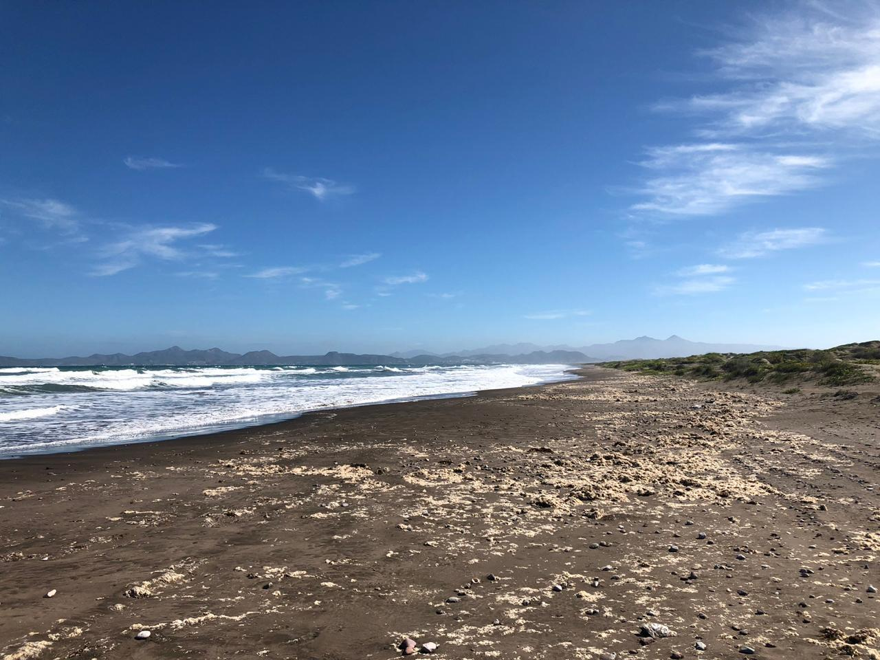 Mogote Double Beach Front Lot-11