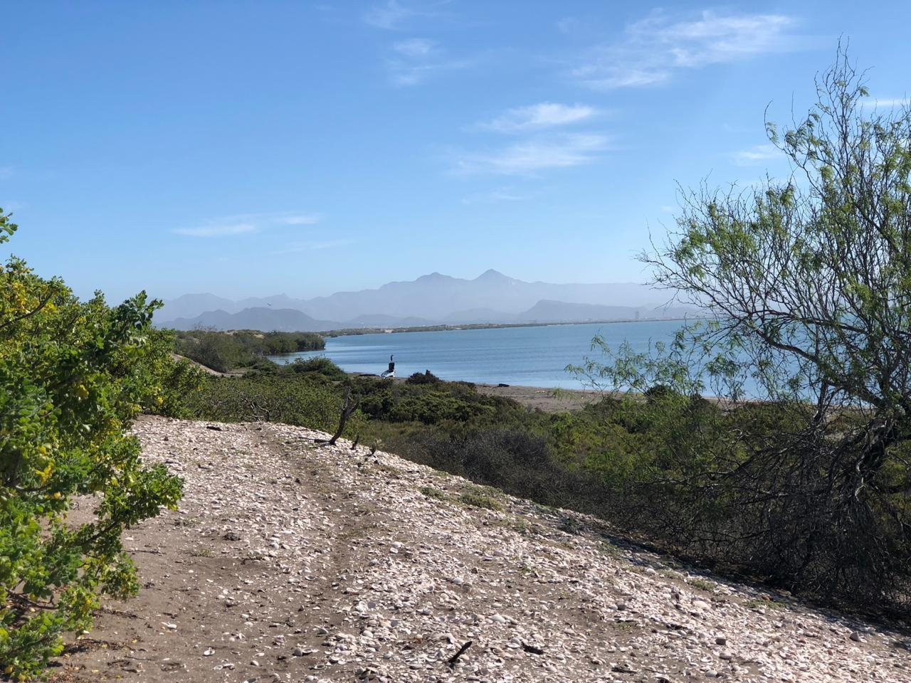 Mogote Double Beach Front Lot-15