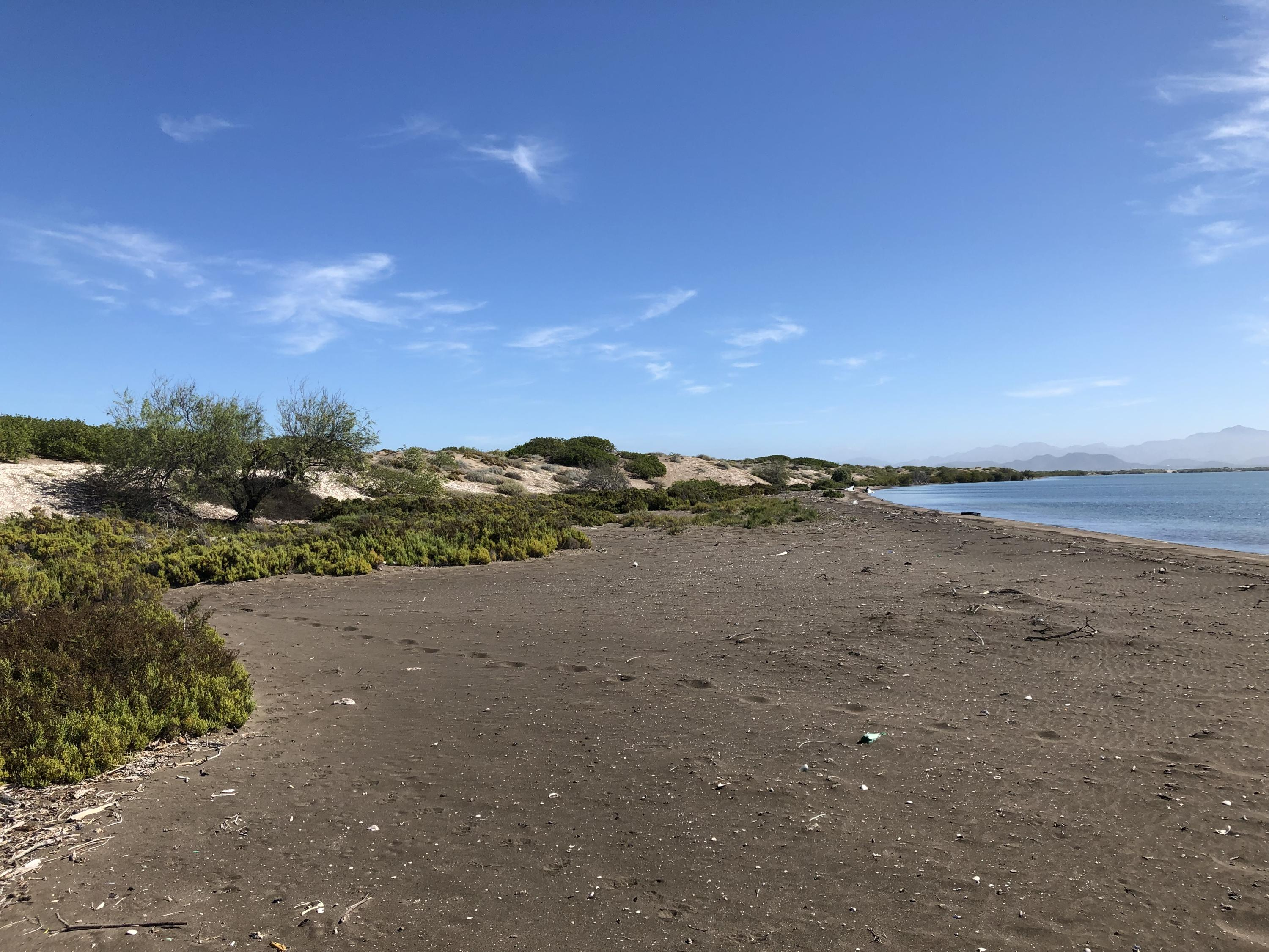 Mogote Double Beach Front Lot-17