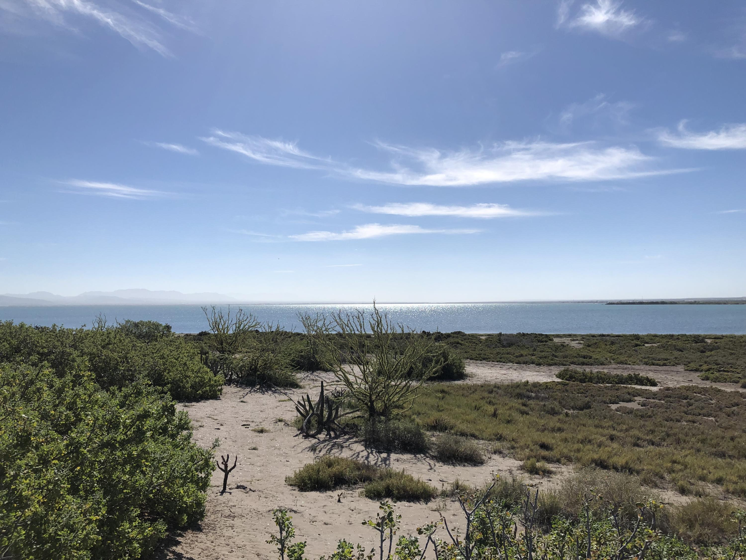 Mogote Double Beach Front Lot-14