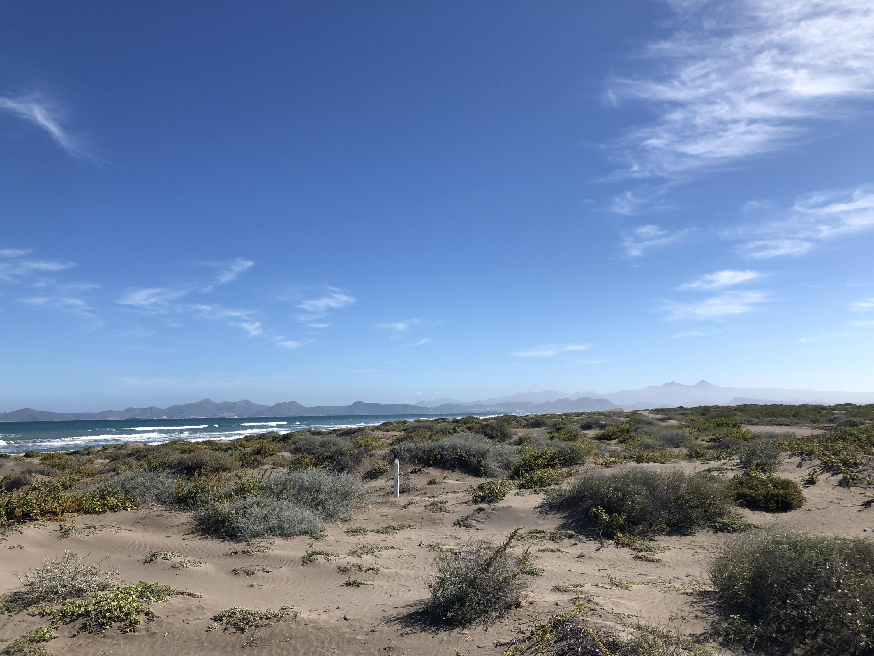 Mogote Double Beach Front Lot-7