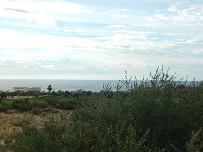 San Jose del Cabo, ,Land,For Sale,Vista Lagos,19-260
