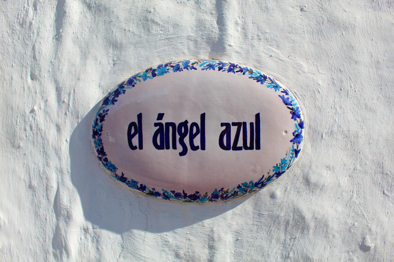 El Angel Azul-4