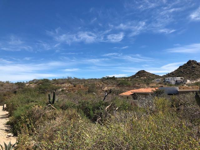 San Jose del Cabo, ,Land,For Sale,Calle Padre Piccolo,19-336