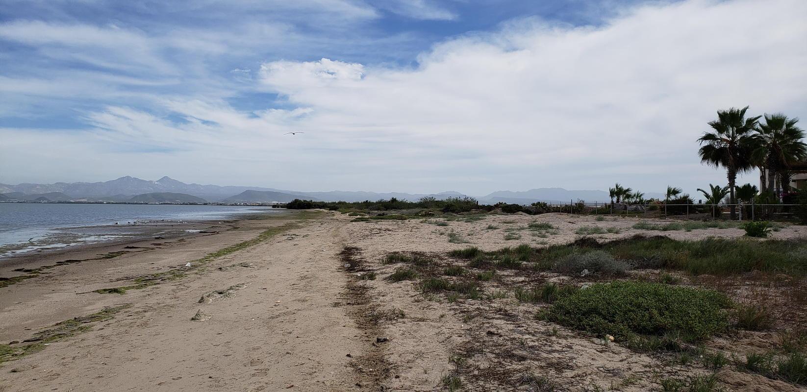Beach Front Centenario-5