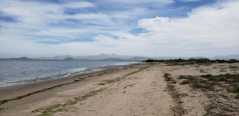 Beach Front Centenario-6