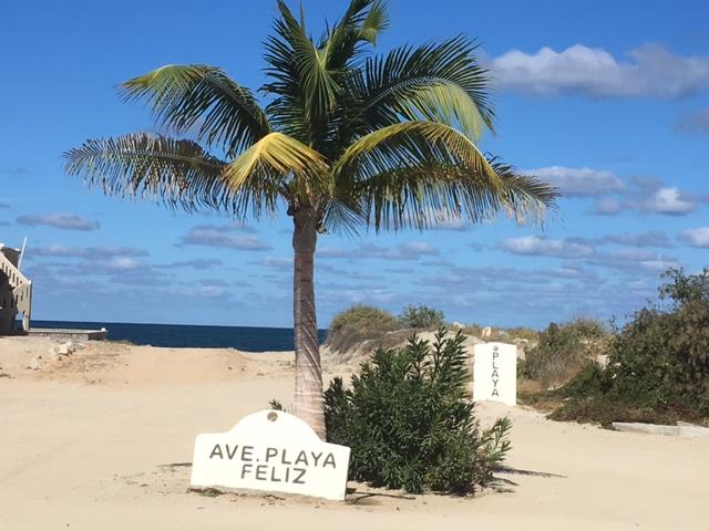 East Cape, ,Land,For Sale,Ave Buena Vida,19-471