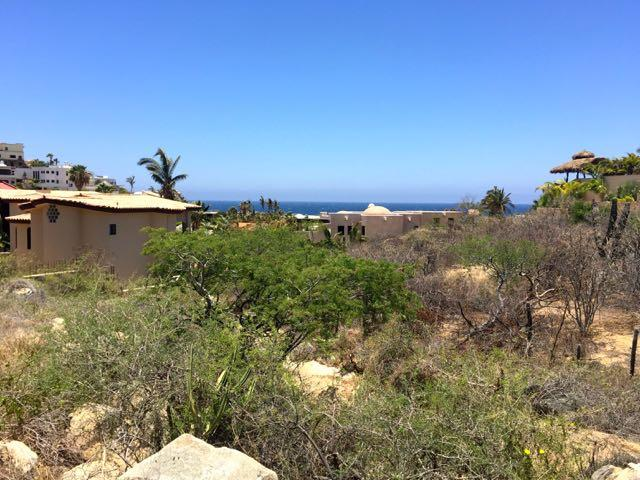 Cabo San Lucas, ,Land,For Sale,Pedregal de Cabo San Lucas,19-496