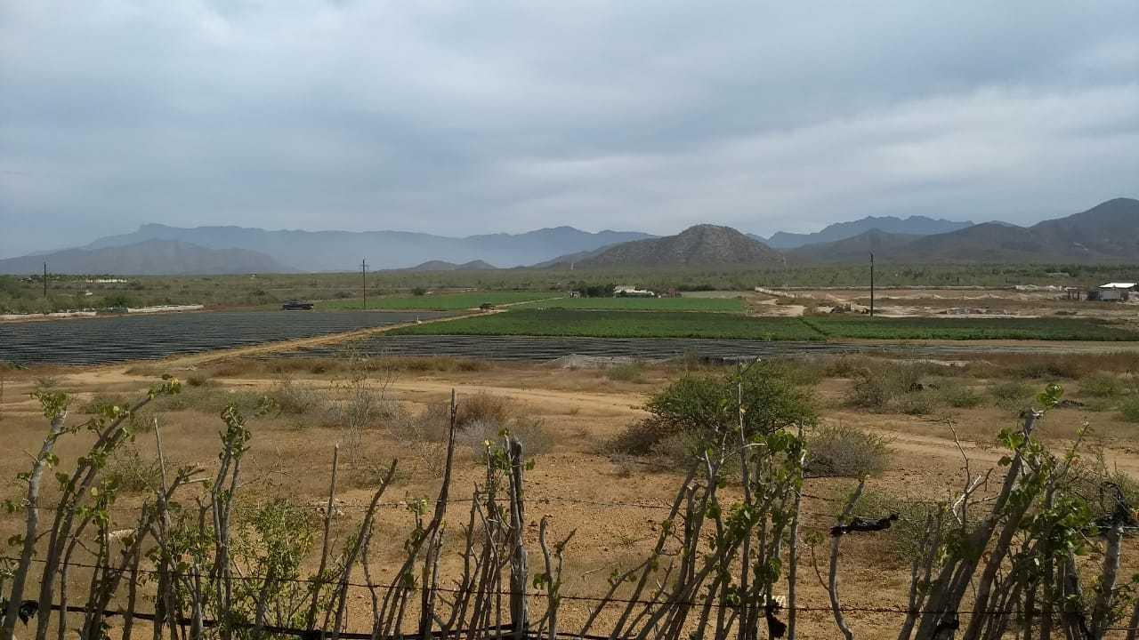Pacific, ,Land,For Sale,Carr. La Paz-CSL,19-569