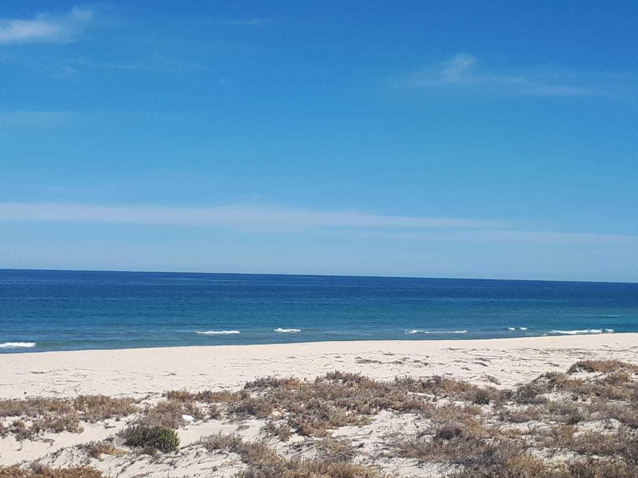 East Cape, ,Land,For Sale,A-55,19-598