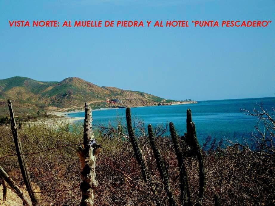 East Cape, ,Land,For Sale,Santa Teresa,19-739