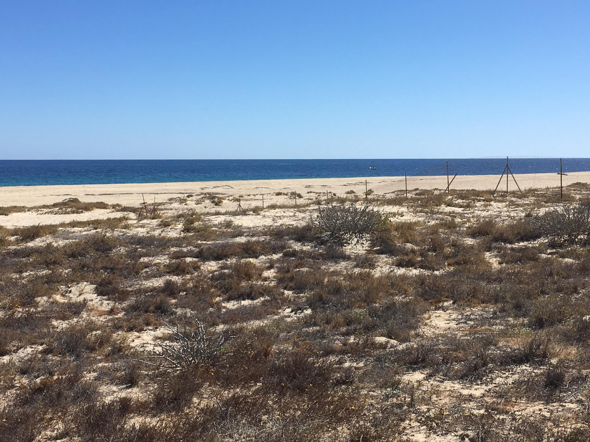 East Cape, ,Land,For Sale,Ave Playa Tortuga,19-767