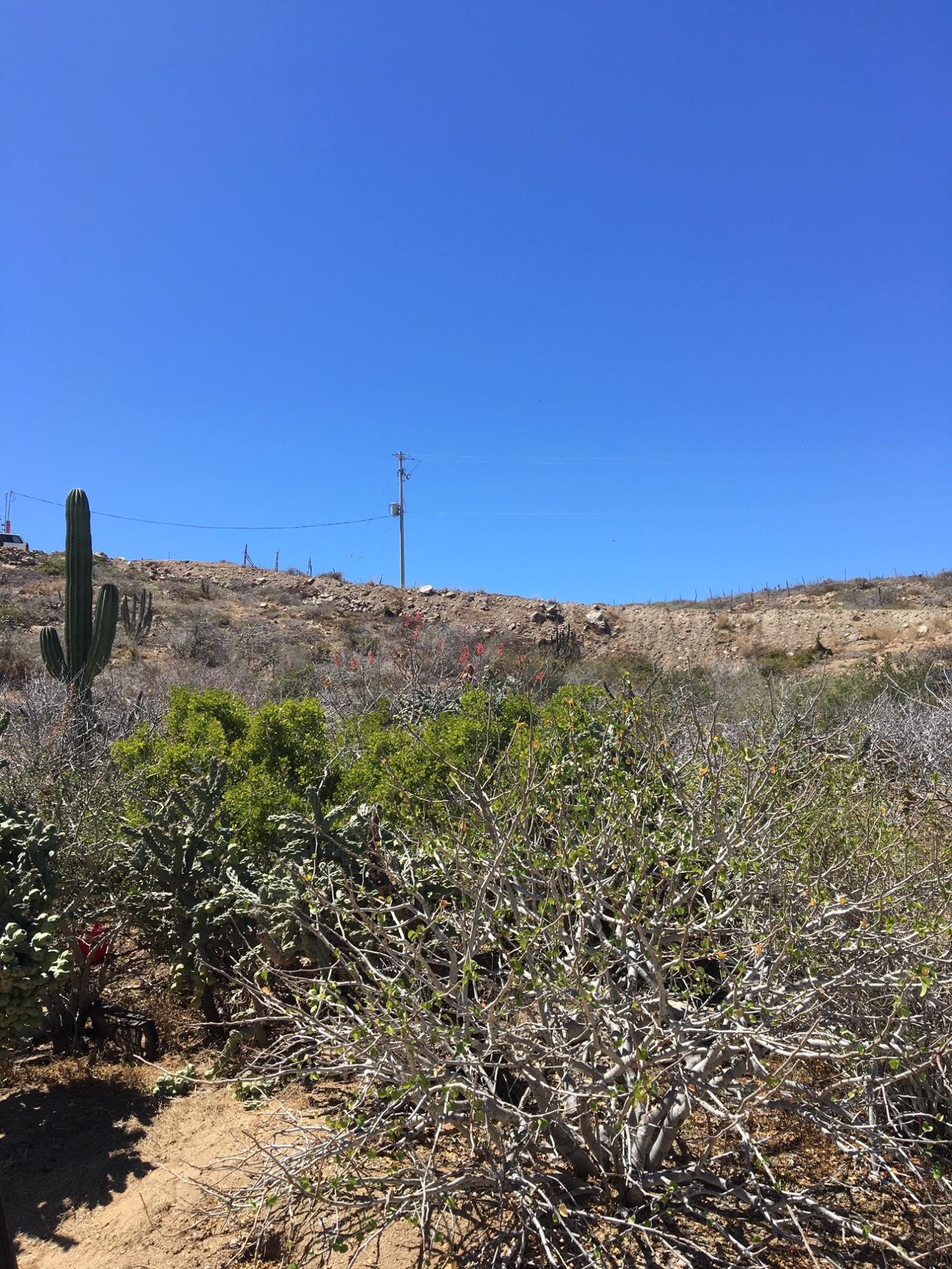 Pacific, ,Land,For Sale,Cerritos Beach Access Lot 2735,19-776
