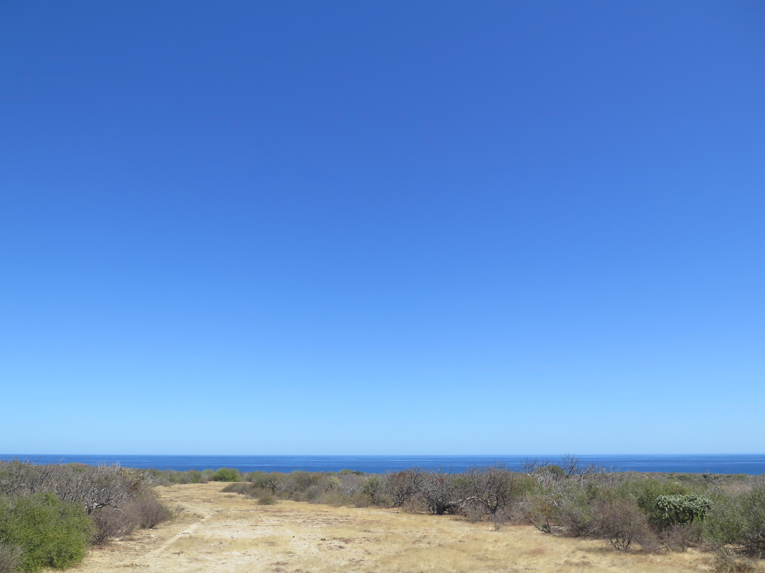 East Cape, ,Land,For Sale,Rancho del Sol Boca del Salado,19-960