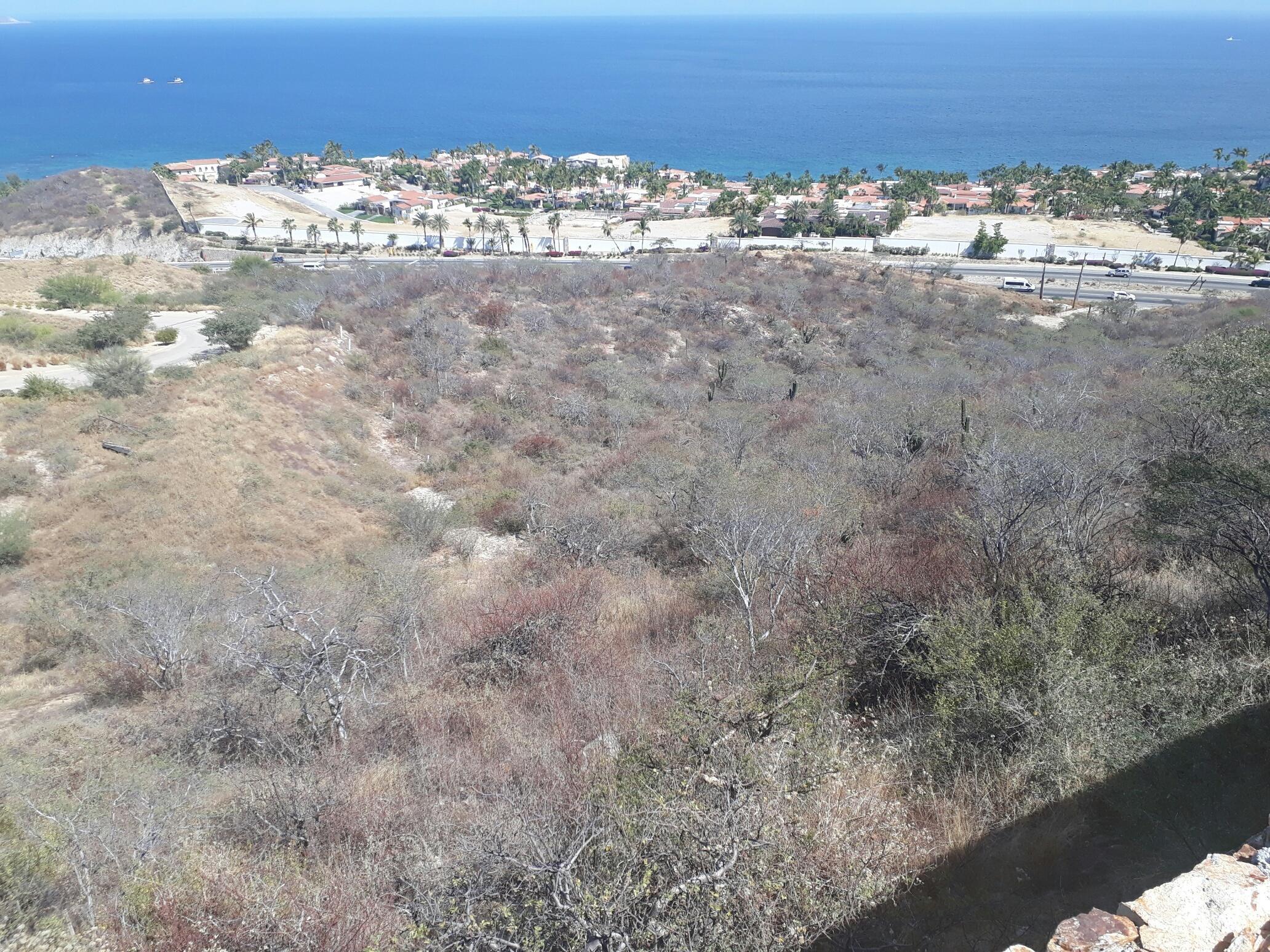 Home Site La Vista 15-7